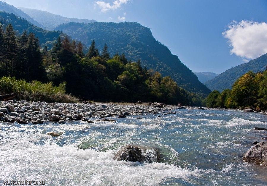 Река марка 10 bani 2010 года цена