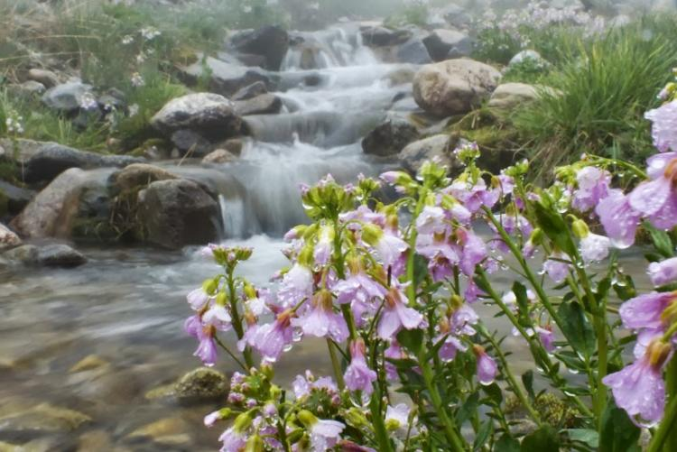 Река Исламчат.